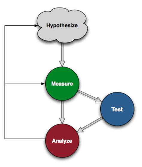 How to write a scientific report aim hypothesis